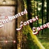 Escape games, Enchanted Forest Escape,Forest Escape,Enchanted Forest,Enchanted Escape,Enchanted Forest Escape Walkthrough