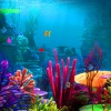 Escape games, Lost Fish Escape 2,Lost Fish Escape,Lost Fish,Fish Escape,Lost Escape