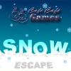Escape games, Snow Escape