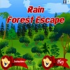 Escape games, Rain Forest Escape,Rain Forest,Forest Escape
